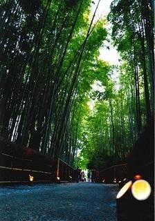 02_向日市観光協会長賞_竹あかりの小道.jpg