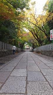 121121向日神社�A.JPG